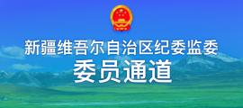 """自治区""""委员通道"""""""